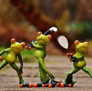 frogs-1212209_1280
